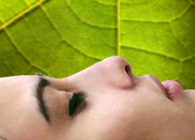Dormire è importante: i cicli del sonno