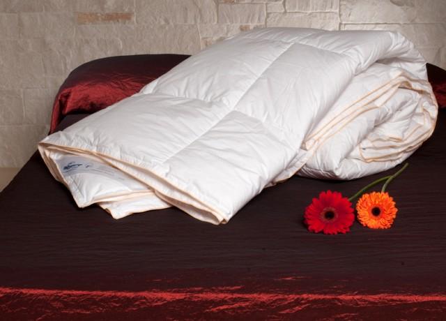 Notturnia vendita piumini letto rovigo notturnia - Piumoni da letto ...