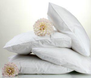 Pillove guanciali, cuscini, complementi letto